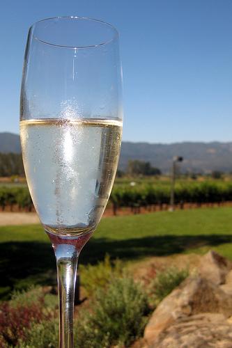 Karbondioksit Yutturulmuş şarap şampanya 2 şarap Oburu