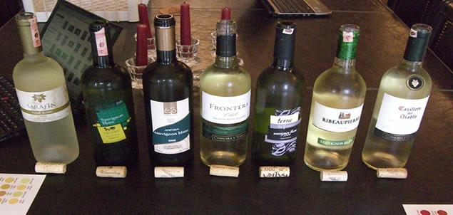 Sauvignon Blanc Tadımı
