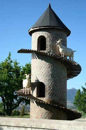Keçi Kulesi - Fairview Goat Tower