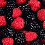Meyvemsi Kokular